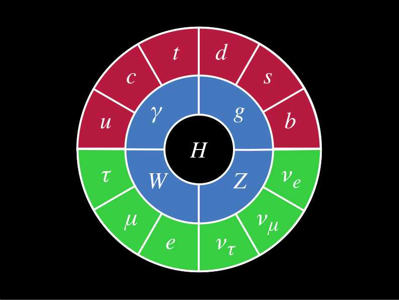 "The Standard Model as depicted in the documentary ""Particle Fever"""